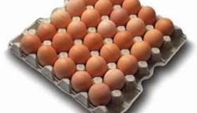 26-03-15 Eieren