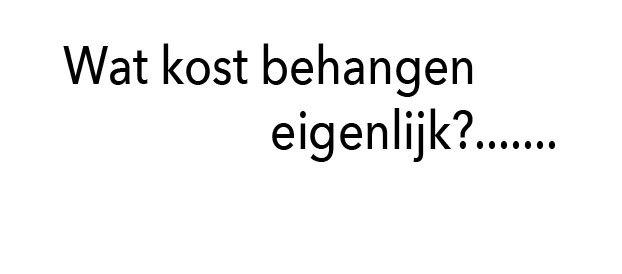 Behanger gezocht wij behangen met de beste prijs for Kostprijs behangen per m2